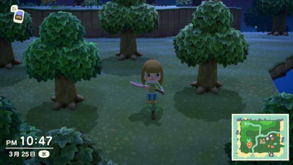 あつまれどうぶつの森 お金のなる木を育てる