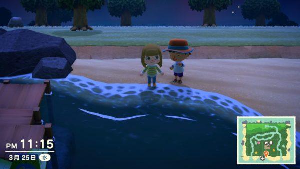 あつまれどうぶつの森 2人目プレーヤー 通信機能を使って他のプレーヤーの島に遊びに行く